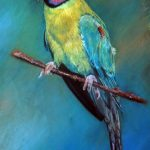 Image Indian Ringneck Painting